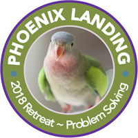 Phoenix Landing Foundation 4th Wellness Retreat, Problem-Solving