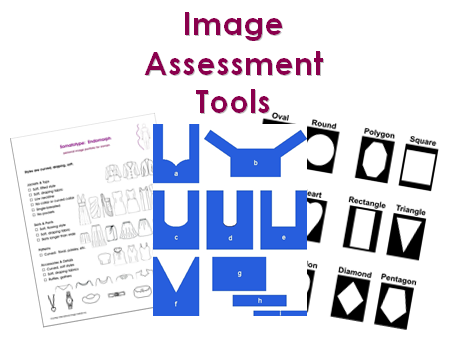 Brunger_Iimage_Assessment_Tools