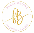 Fleek Brows 2 Day Boot Camp Microblading Training