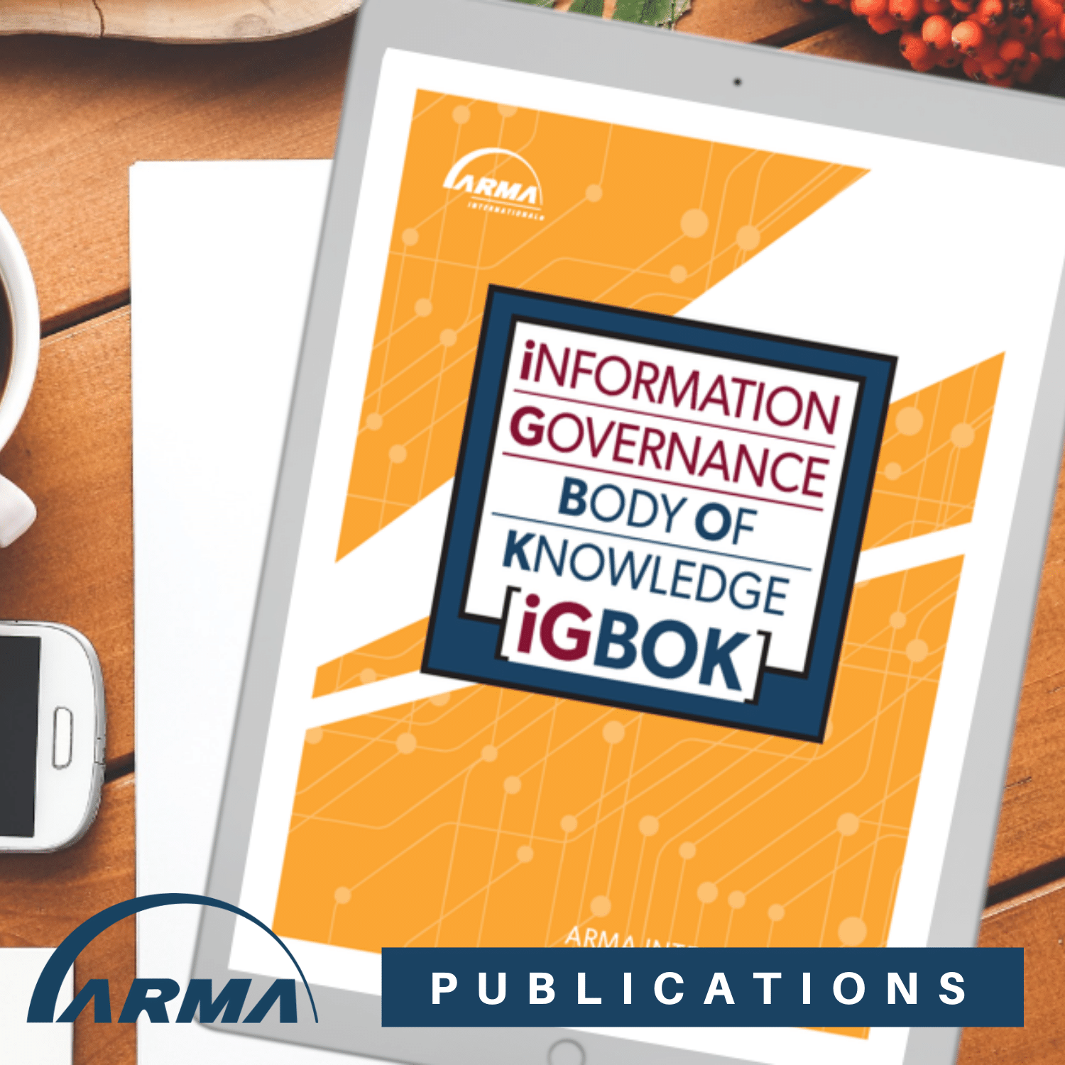Information Governance Body of Knowledge (IGBOK)