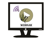 Virtual Learning July Webinar: High Risk Medications- A Focus on Hypoglycemic Agents