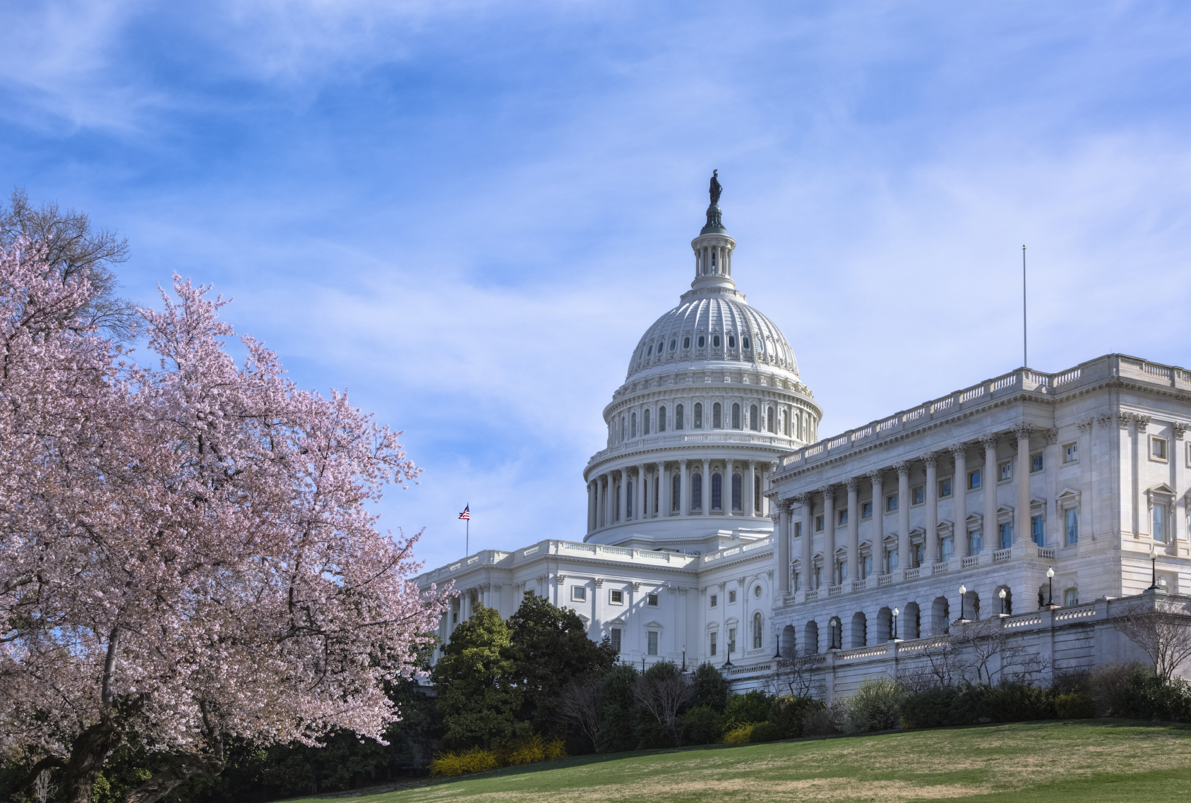 ECFC Member Resources - Capitol Hill
