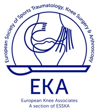 ESSKA-EKA Open Meeting: Innovation in degenerative knee surgery