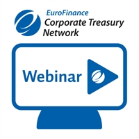 Expert Briefing - Virtual Cash Management