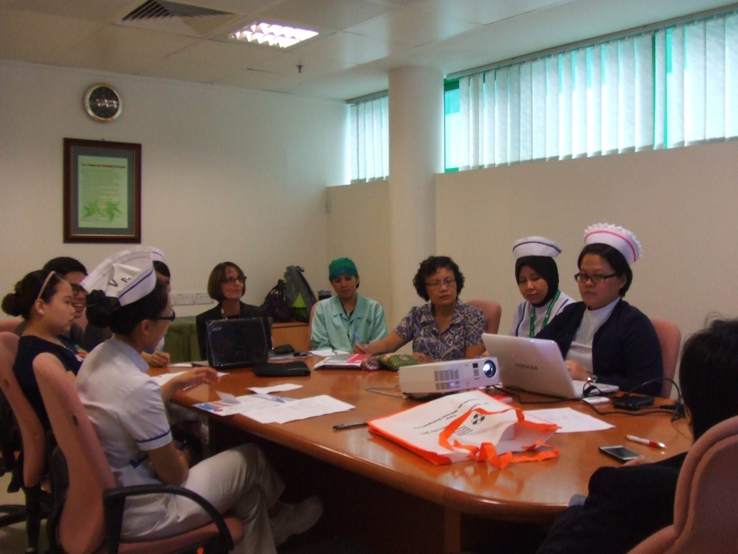 Image of Senior Nurses in a Meeting