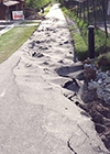 buckled bike path in Canmore, June 26-27, 2013