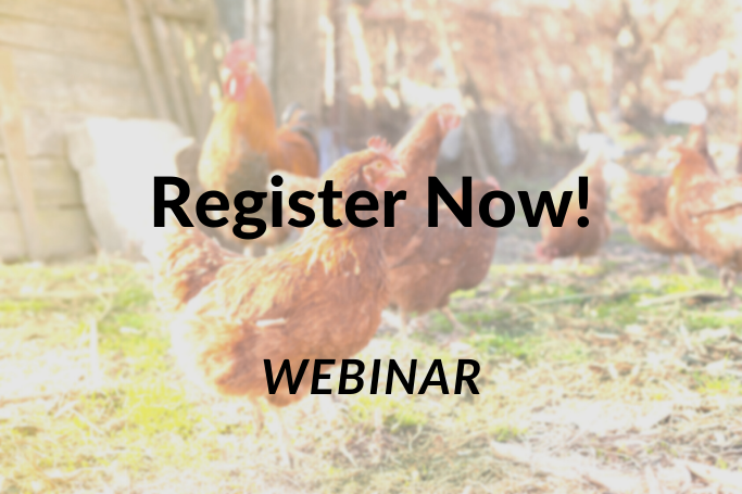 Insuring Hobby and Small Farms  Webinar