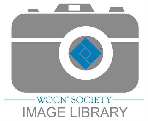 WOCN Image Library Logo