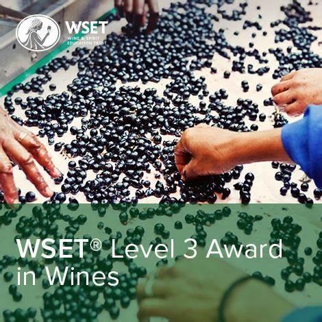 WSET Level 3 logo