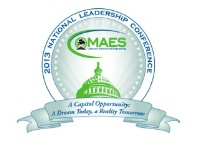 2013 MAES NLC - Professional Registration