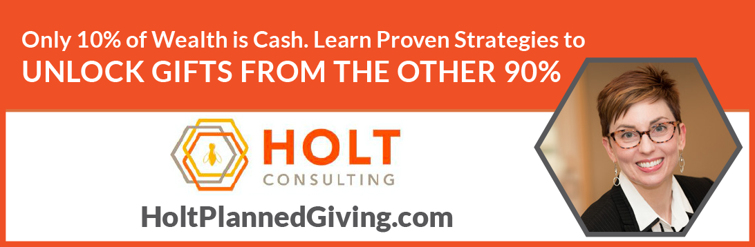 HOLT Consulting