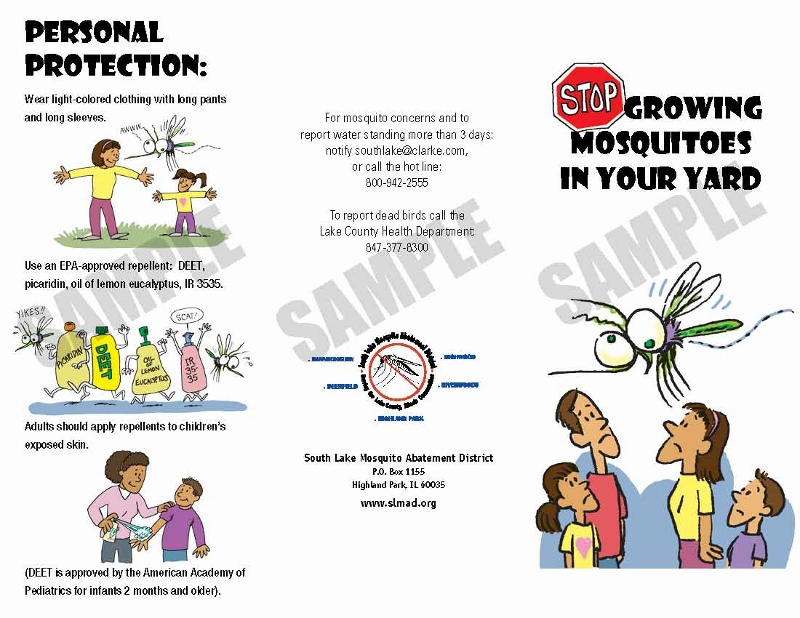 Ready To Purchase Stop Growing Mosquitoes In Your Yard Brochure