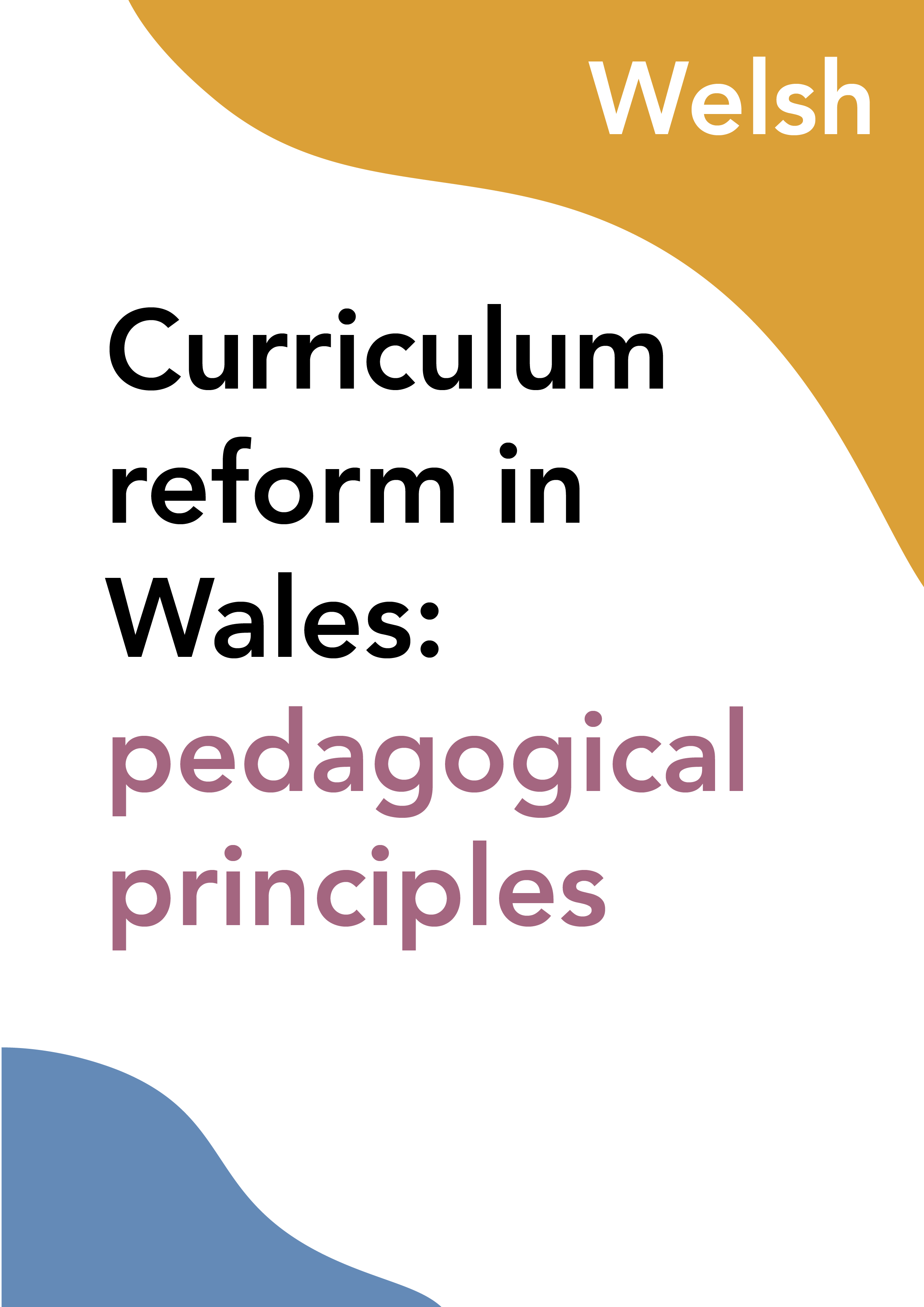 Curriculum reform in Wales: pedagogical principles (Welsh)