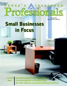 Small Businesses in Focus