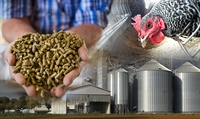 Intensive Feed Manufacturing Science