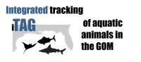 2017 integrated Tracking (iTag) of Aquatic Animals in the GoM workshop