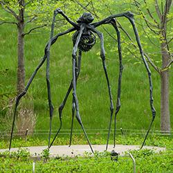 Louise Bourgeois, Spider. Photo: William Herbert