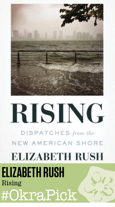 Rising: Dispatches from the New American Shore by Elizabeth Rush