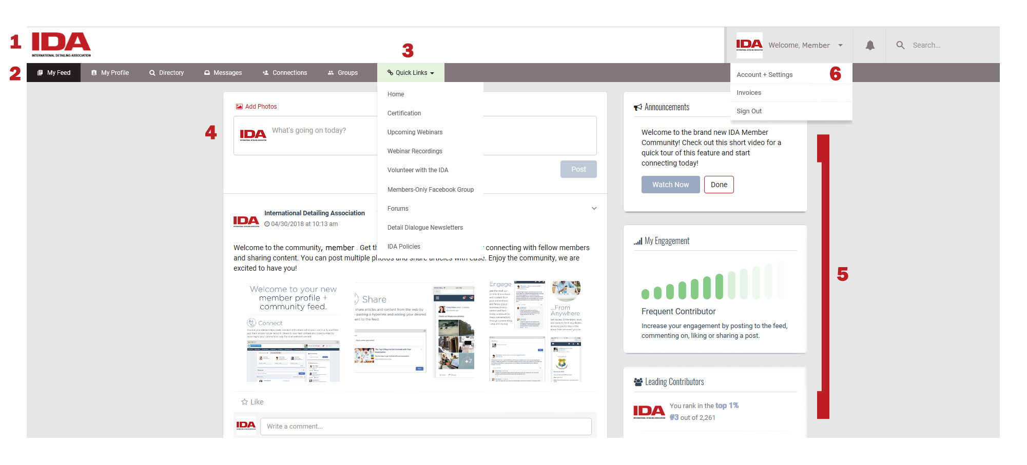 IDA Website Spotlight: Navigating Your New Member Dashboard