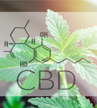 CBD Oil Resource