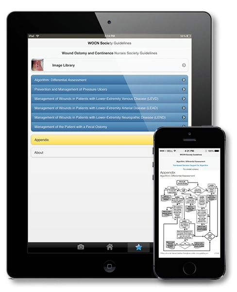 Evidence-Based Wound Care Guidelines and Fecal Ostomy Best Practice Mobile App
