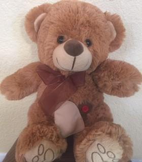 Ollie_Ostomy_Bear