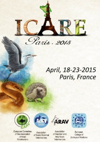 ICARE Conference 2015