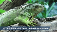 2019 UC Davis Wildlife and Exotic Animal Symposium
