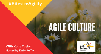 Episode 9: Agile Culture with Katie Taylor