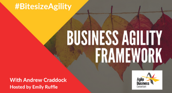 Episode 7: Business Agility Framework with Andrew Craddock