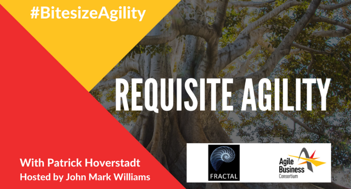 Episode 4: Requisite Agility