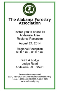 Andalusia Regional Reception