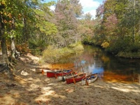 Fall in Love with Canoeing Pine Barrens Workshop