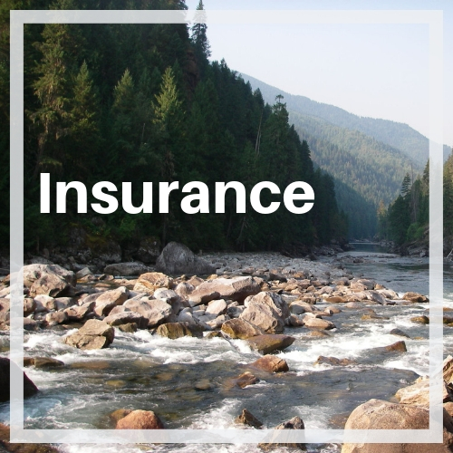 Insurance for Clubs, Instructors, Businesses, Competitions & Festivals