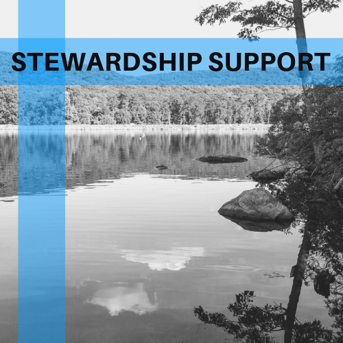 Stewardship Support for your local waterways