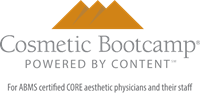 Cosmetic Bootcamp for the Core Physician