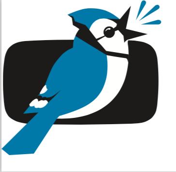Jaybird Media