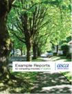Example Report Book, 3rd Edition