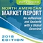 2017-2020 ASC North America Market Report Overview