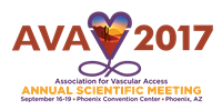 AVA 2017 Call for Presentations