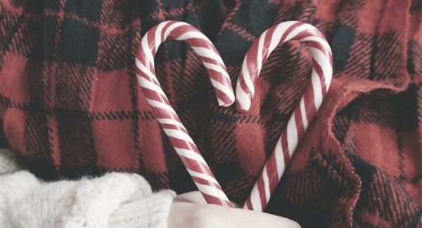charity holiday season img