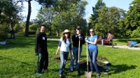 Ravenswood Manor Parkway Tree Planting Day