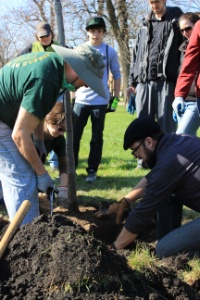 Francis D. Hayes Park Tree Planting