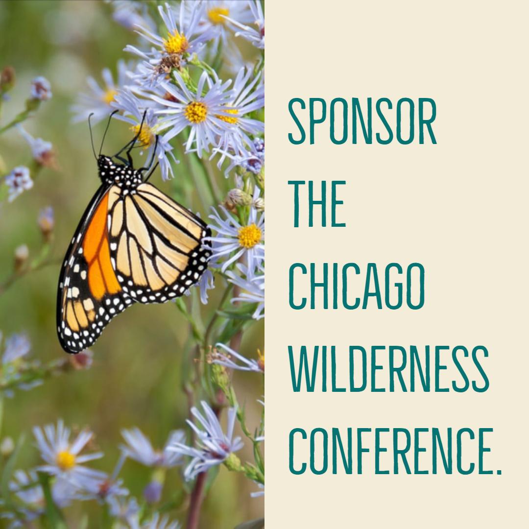 Sponsor Chicago Wilderness Congress button
