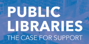 Public Libraries: the case for support
