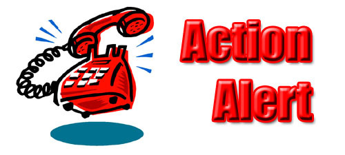 red words action alert with phone