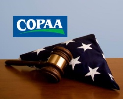 picture of US flag, gavel, and COPAA Logo