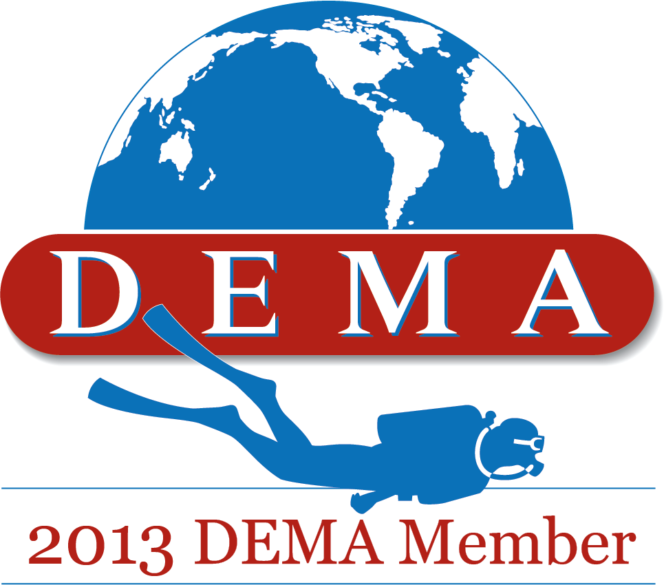 2013 DEMA Member