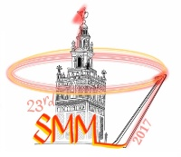 Conference / magnetism : 23rd soft magnetic materials conference