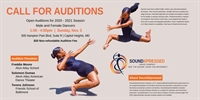 SoundXpressed Dance Company Auditions